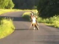 Video de KTM Supermoto